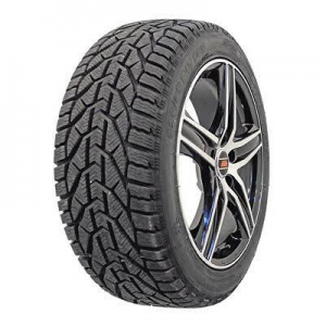 Taurus	205/60R16 96H XL Winter